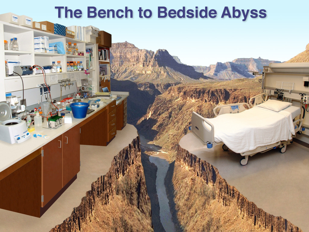 Bench to Bedside Abyss