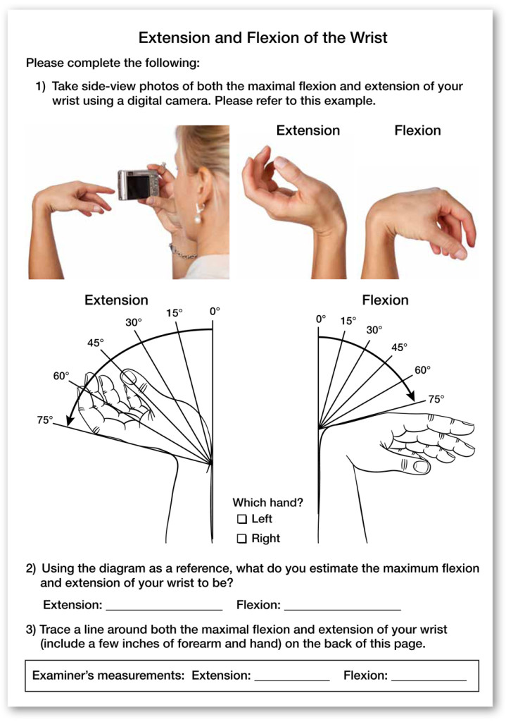 Upward Rotation of Arm
