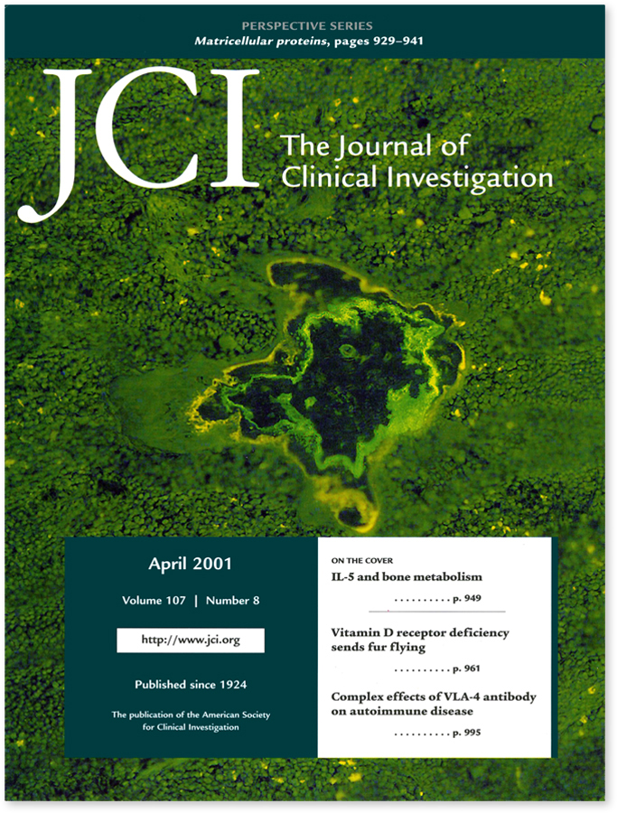 JCI 04-2001