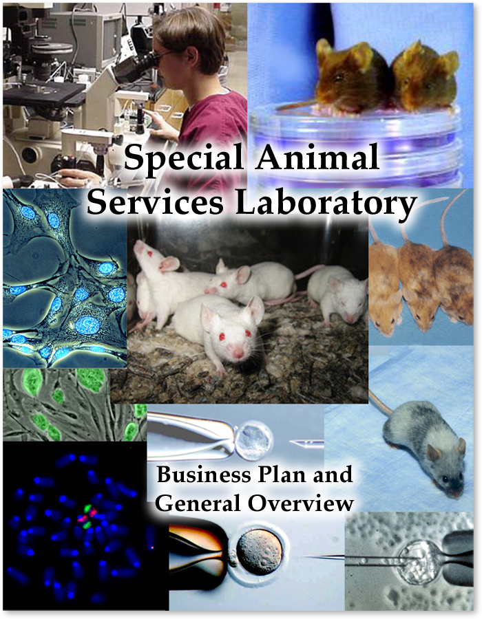 Special Animal Services Cover